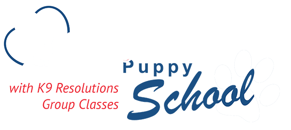 clyde vet canine resolutions puppy school