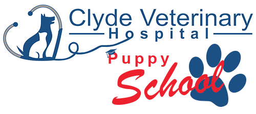 clyde vet puppy school now enrolling