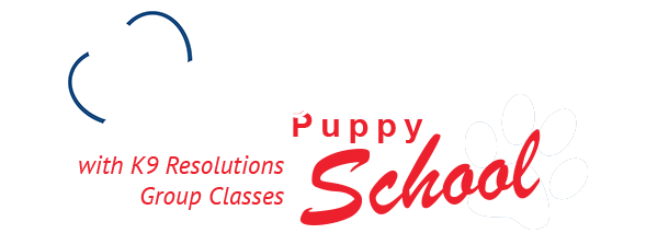 clyde veterinary hospital puppy school