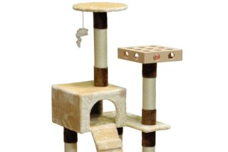 cat boarding condo tree house