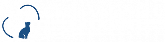 clyde veterinary hospital casey cranbourne berwick