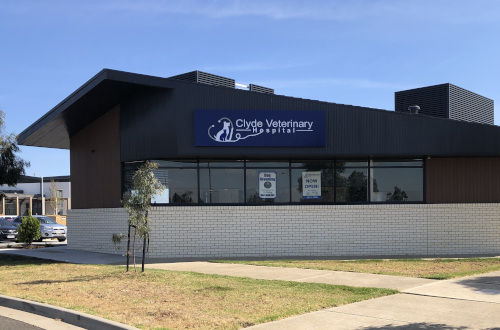 clyde veterinary hospital casey cranbourne