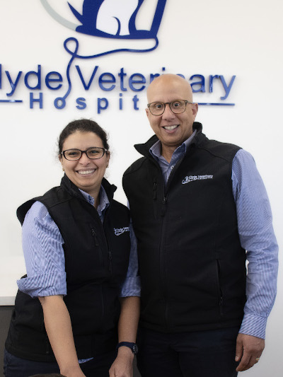 accredited cat fiendly staff clyde veterinary casey