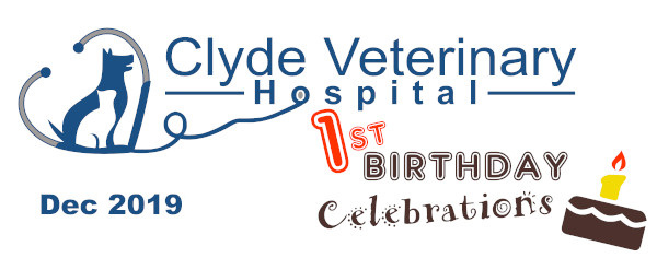 clyde vet casey cranbourne berwick first birthday