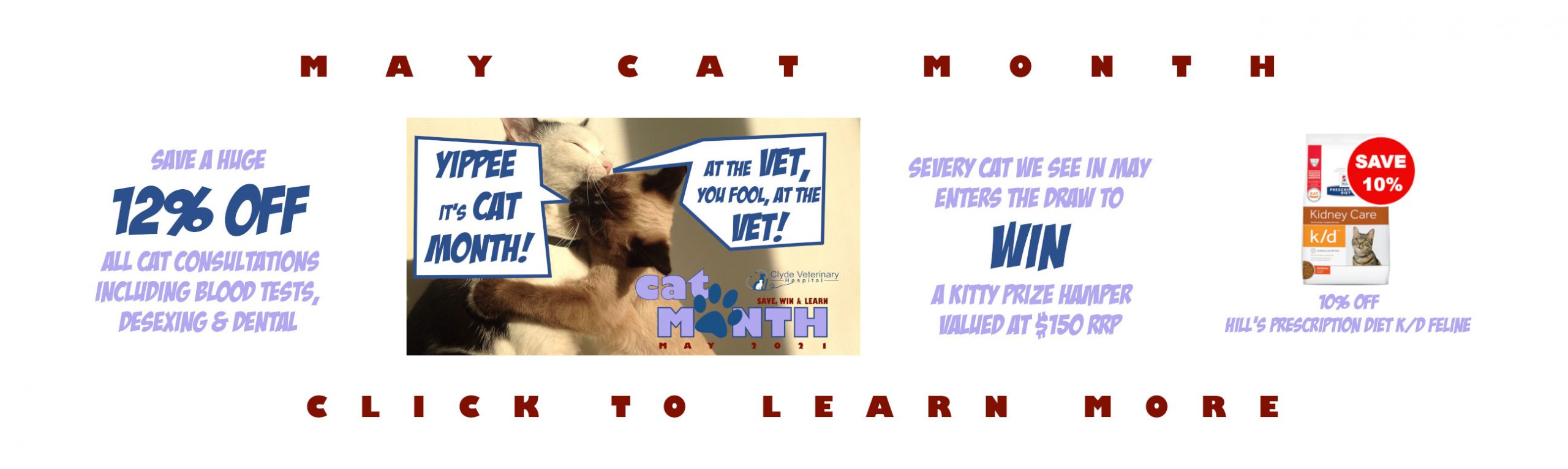 cat month clyde vets